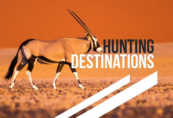 South African Hunting Destinations