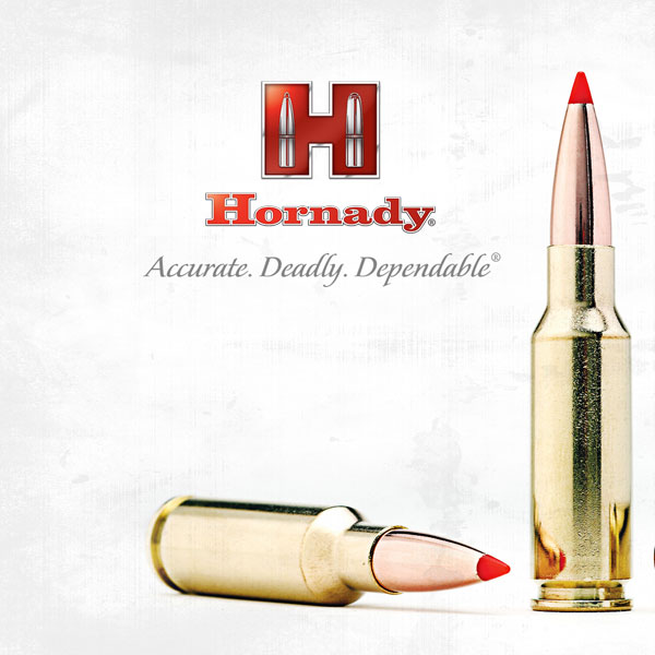 Hornady Reloading Brass and cases