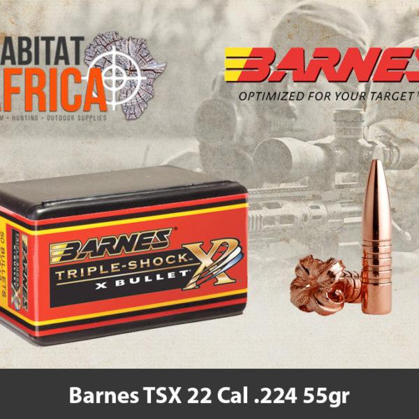 Barnes TSX 22 Cal .224 55gr Bullets