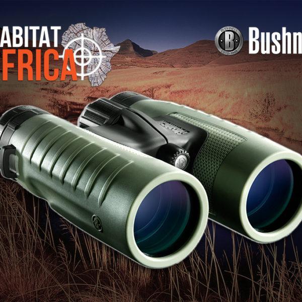 Bushnell NatureView 8x42 Binoculars Front Lenses