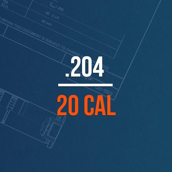 .204 20 Cal