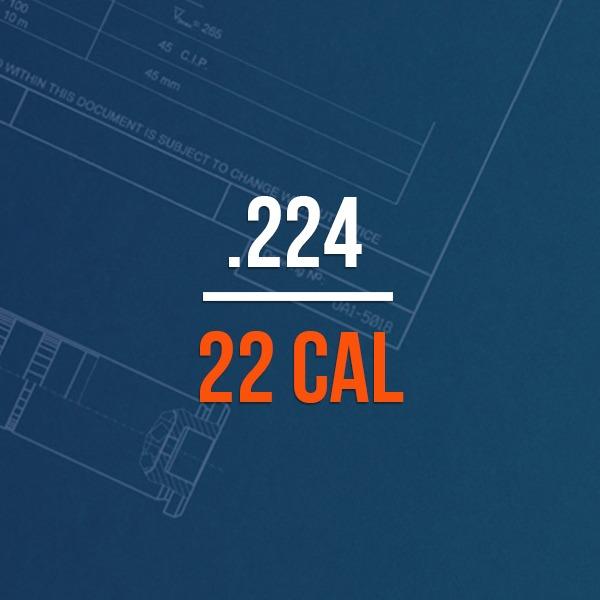 .224 22 Cal