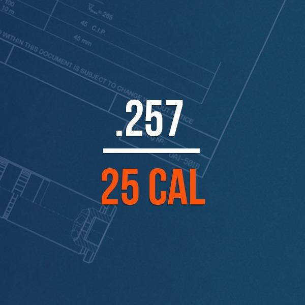 .257 25 Cal