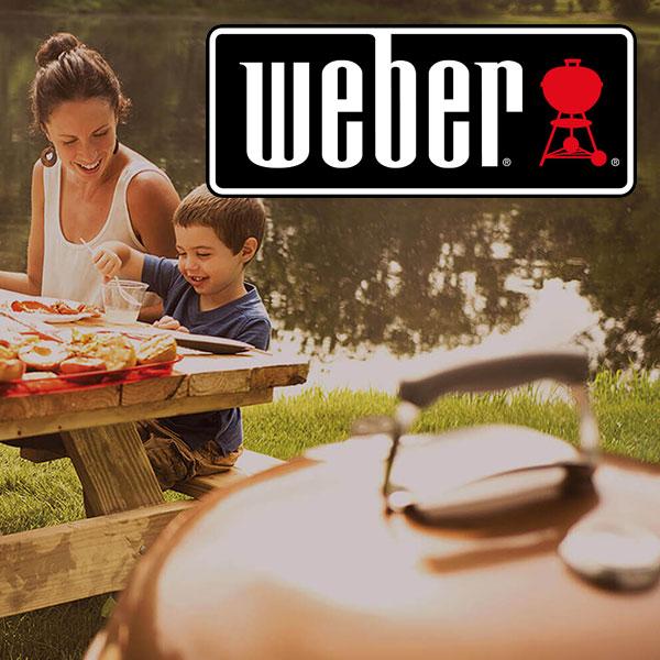 Weber Portable Braais