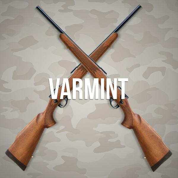 Howa Varmint