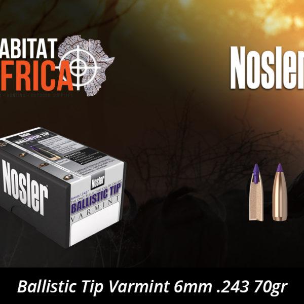 Nosler Ballistic Tip Varmint 6mm 243 70gr Bullets