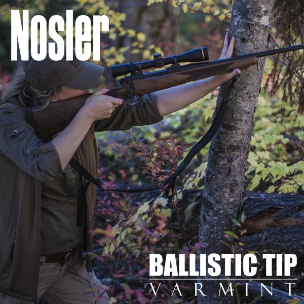 Ballistic Tip Varmint