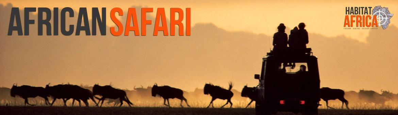 African Safari Destinations