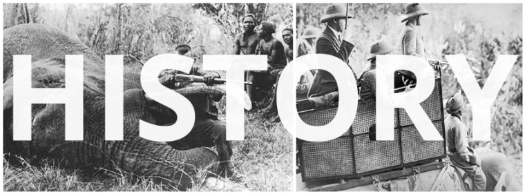 A History of Hunting in Africa