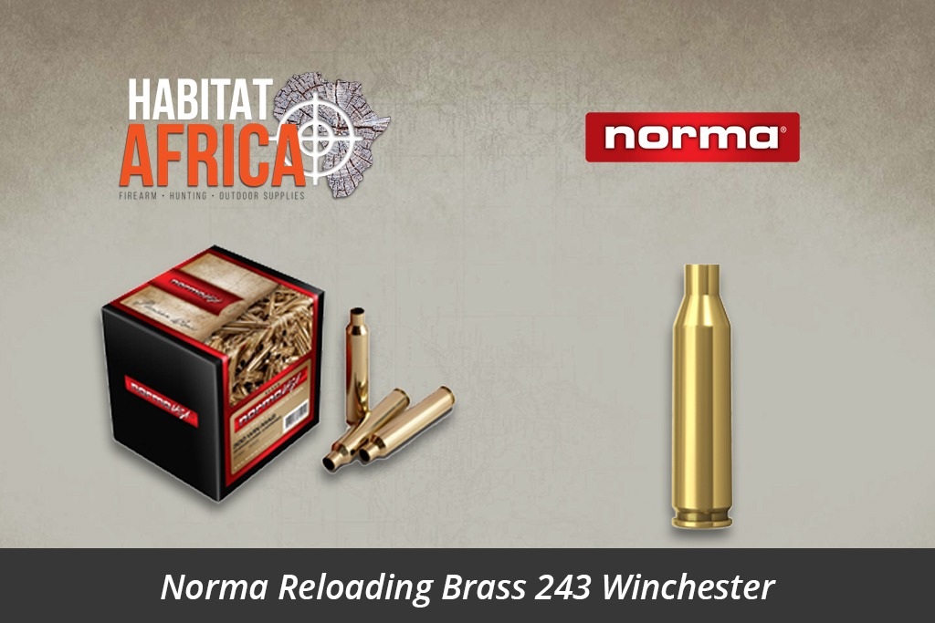 Norma Reloading Brass 243 Winchester 100pcs