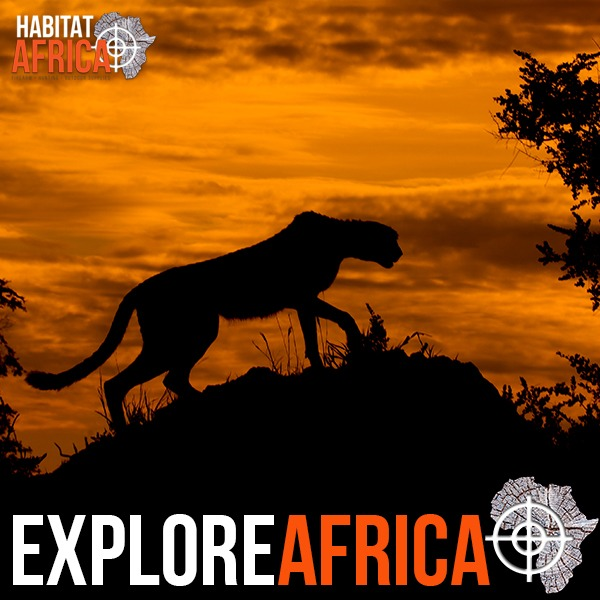 Explore African Hunting Destinations