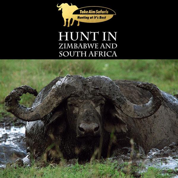 Take Aim Safaris