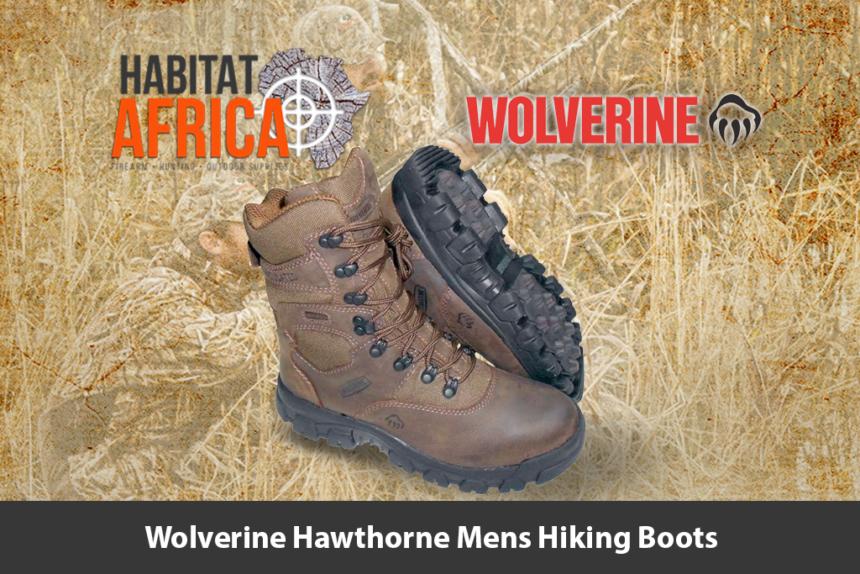 Wolverine Hawthorne 8