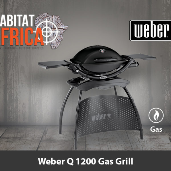 Weber Q 1200 Portable Gas Grill and Stand