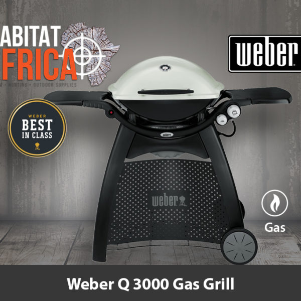 Weber Q 3000 Portable Gas Grill and Stand - Best in Class