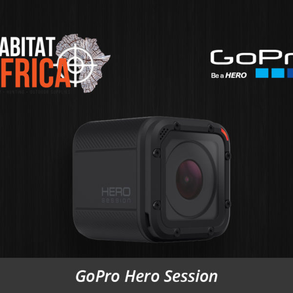 GoPro Hero Session Action Video Camera