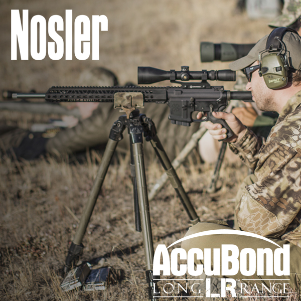 AccuBond Long Range