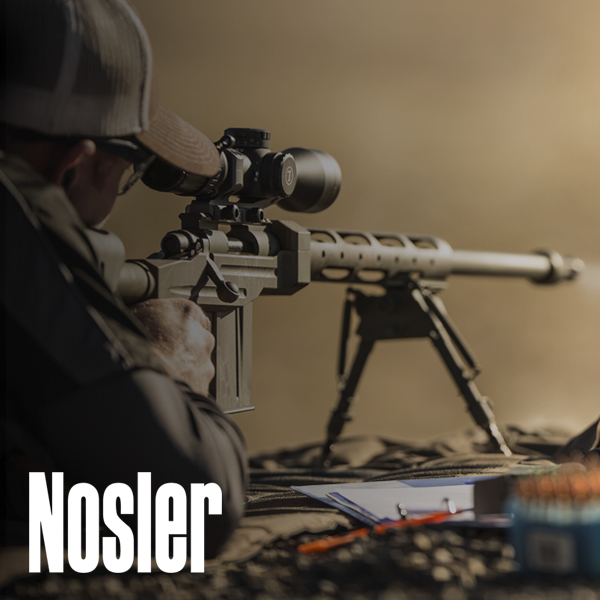 Nosler Bullets South Africa