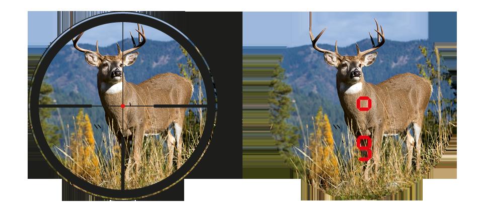 Leica Advanced Ballistic Compensation Function 2
