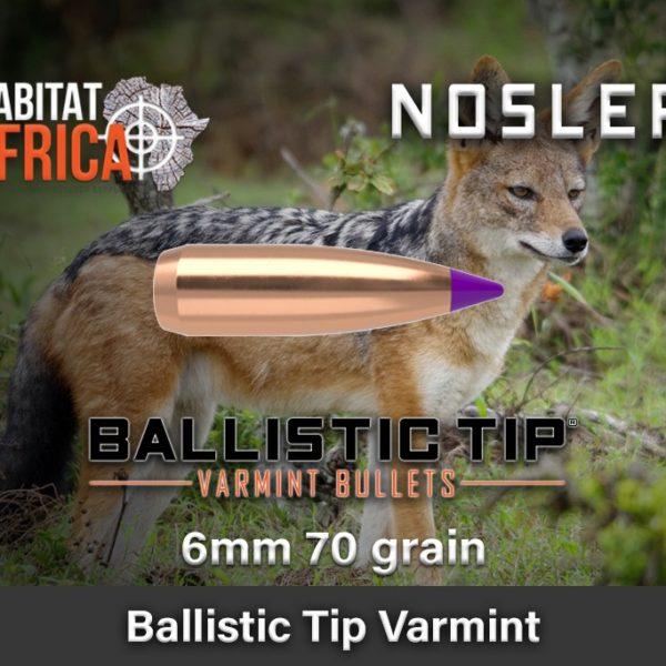 Nosler-Ballistic-Tip-Varmint-6mm-70-grain-Habitat-Africa-1